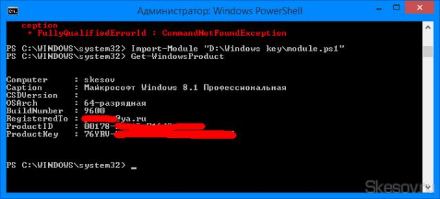 Скрипт отобразит в командной строке подробную информацию об активации системы.