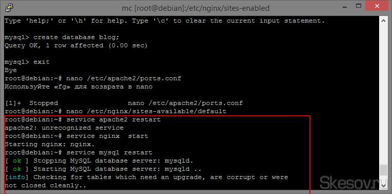 Теперь перезапускаем все, в чем вносили изменения и запускаем установленное. Для этого вводим следующие команды по очереди:  service apache2 restart  service nginx start  service mysql restart