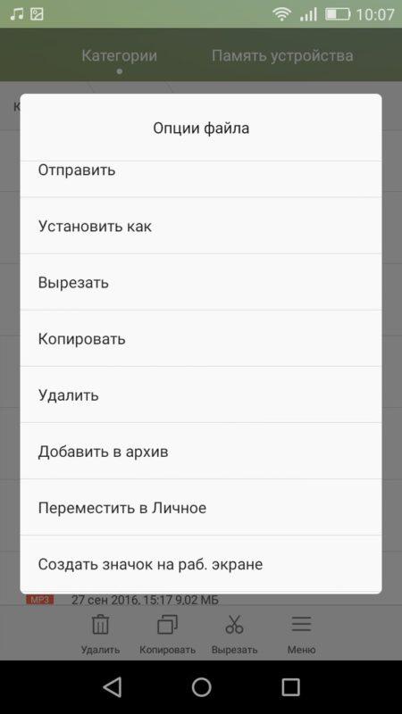 Скриншот опций файла