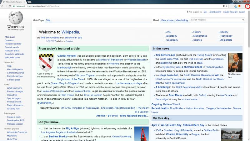 Вид окна в браузере Google Chrome