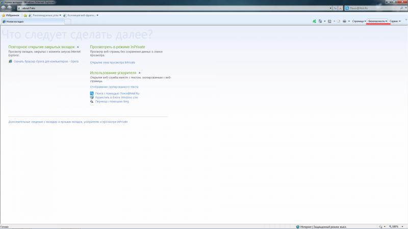 Вид окна в браузере Internet Explorer